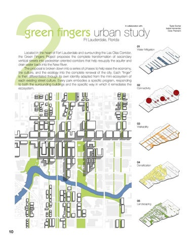 Page 12 of The Green Fingers Project