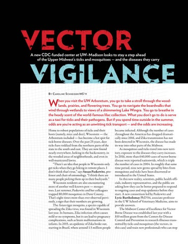 Page 28 of Vector Vigilance