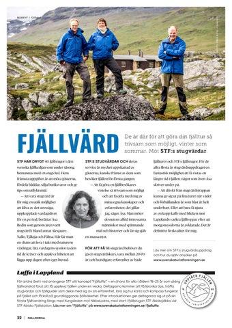 Page 22 of Fjällvärd