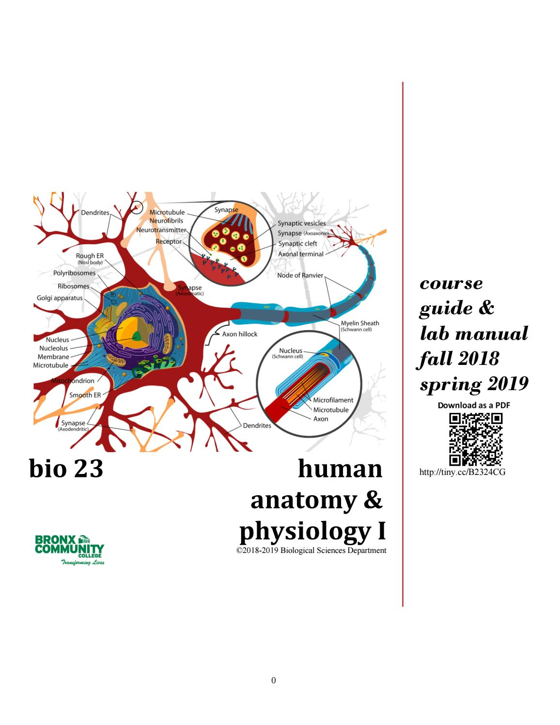 BIO23 F17-S18 Complete Course Guide by Human Anatomy - issuu