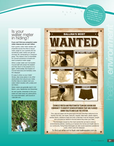 Page 31 of Ballina's Most Wanted