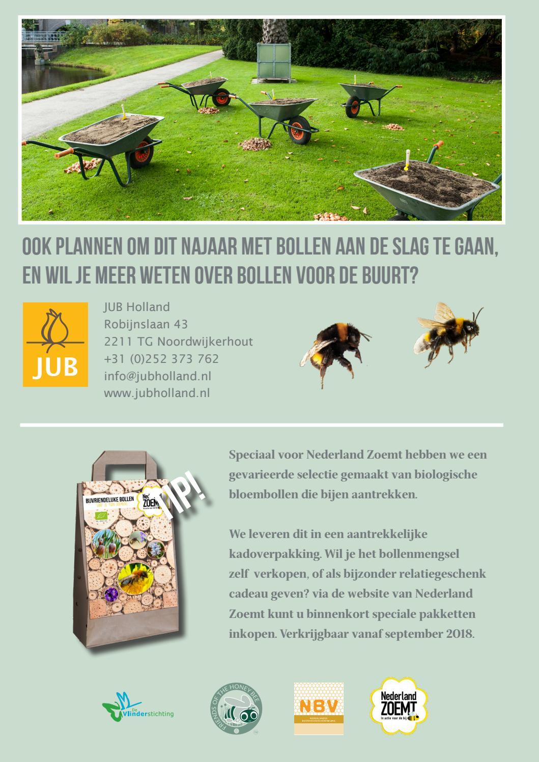Bollen Voor De Buurt 2018 By Jub Holland Issuu