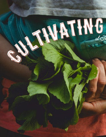 Page 94 of Cultivating Our Roots