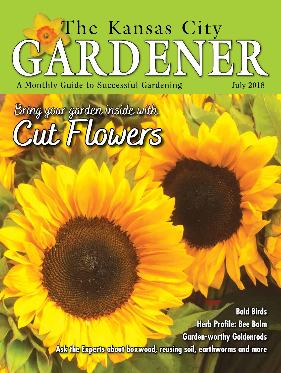 ideas for flower vase fillers with natural green flower.htm kcg 07jul18 issue by the kansas city gardener issuu  kansas city gardener