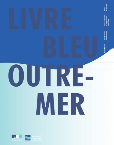 Livre Bleu Outre Mer Synthese By La1ere Issuu