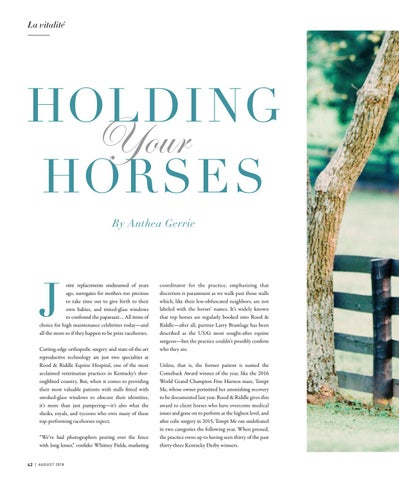Page 42 of Holding Your Horses