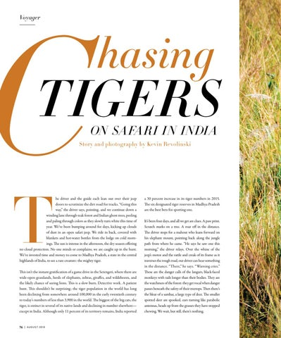 Page 76 of Chasing Tigers