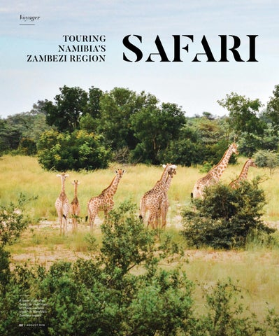 Page 88 of Safari by Boat