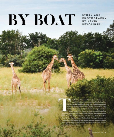 Page 89 of Safari by Boat