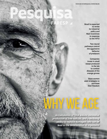 ca5958ceb Why we age by Pesquisa Fapesp - issuu