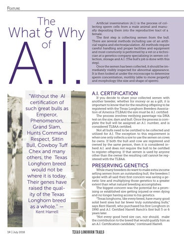 Page 16 of The What & Why of A.I.