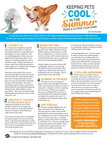 Page 16 of Keeping Pets Cool in the Summer Inside & Outside Your Home!