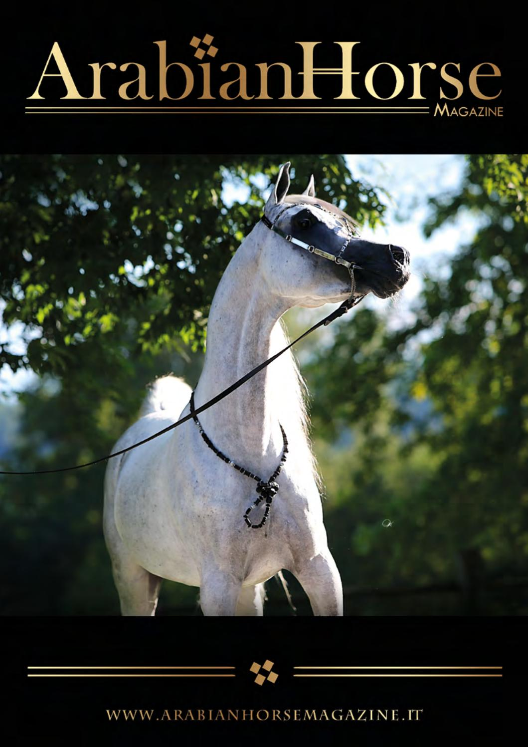 Arabian Horse Magazine N 2 2018 By Arabian Horse Magazine Issuu