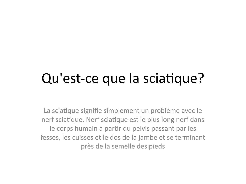 Qu Est Ce Que La Sciatique By Kaneter Issuu