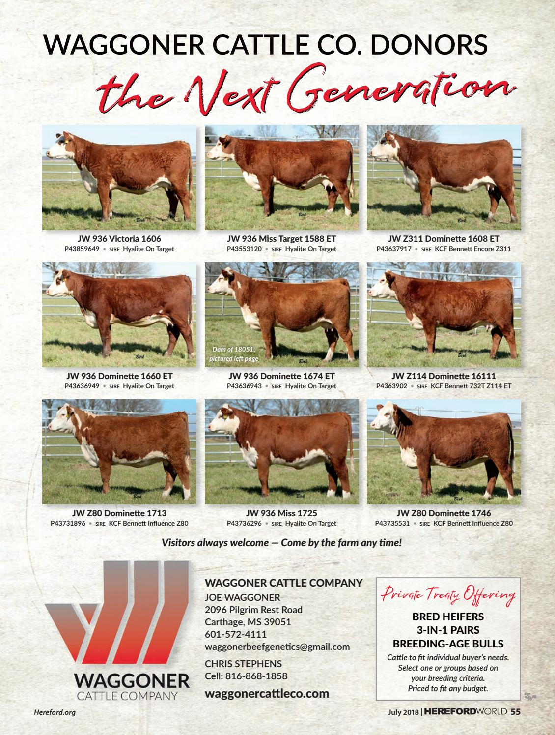 July 2018 Hereford World By American Hereford Association