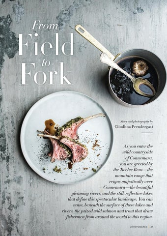 Page 37 of From Field to Fork