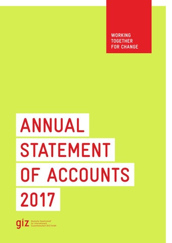 Annual Statement of Accounts 2017 by Deutsche Gesellschaft für