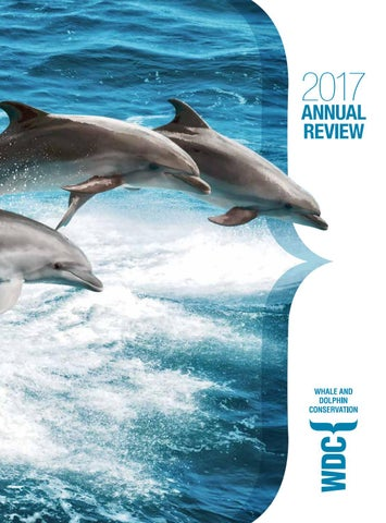 WDC Annual Review 2017 by Think Publishing - issuu