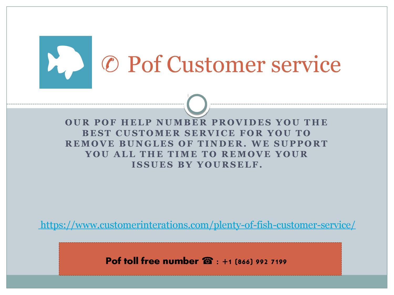 1-866-992-7199 Plenty Of Fish customer service number by Pof