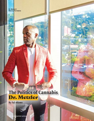 Page 38 of The Politics of Cannabis