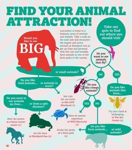 Page 42 of Animal Attraction