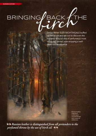 Page 12 of Bringing back the Birch