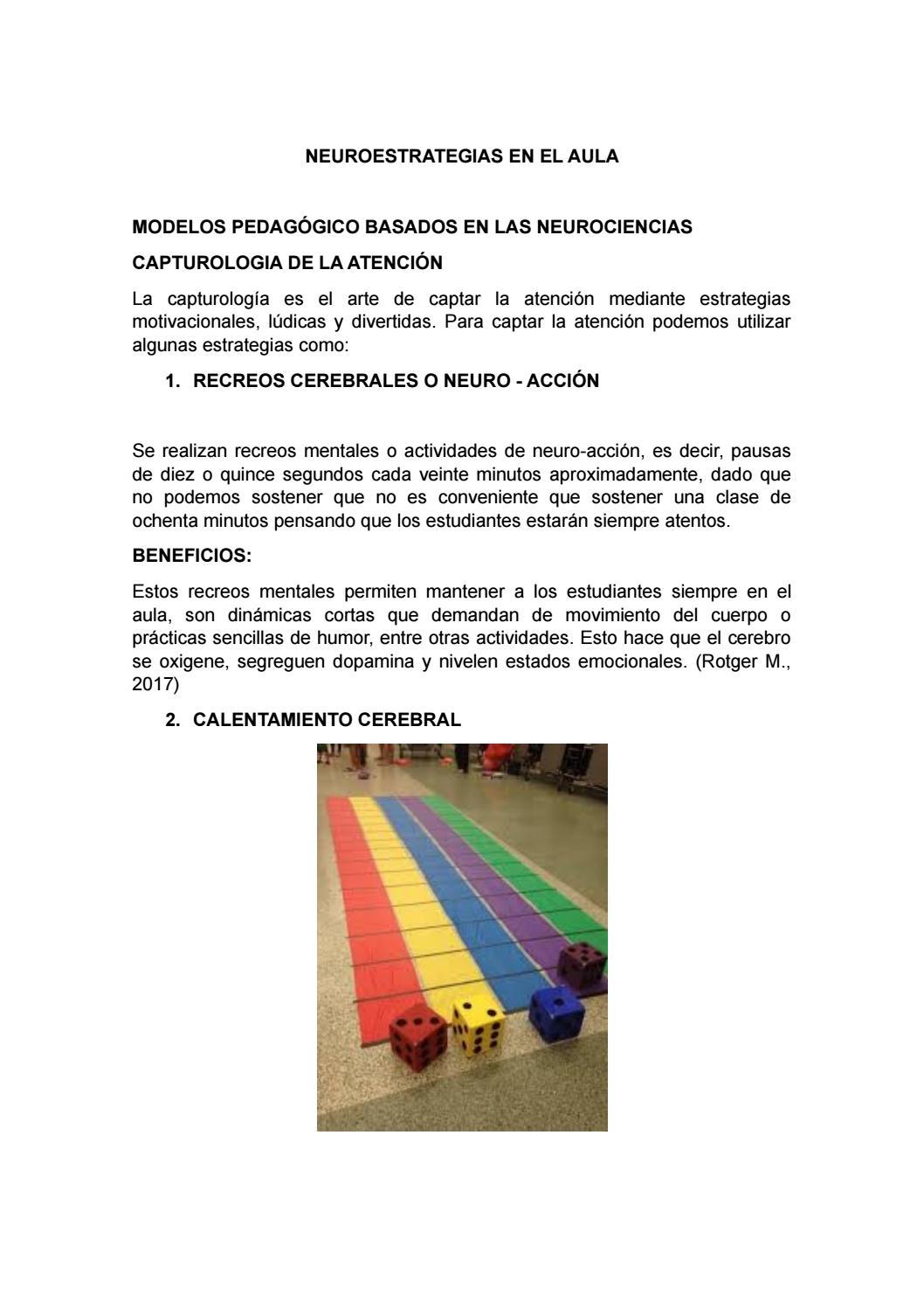 Neuroestrategias En El Aula By Jorgearteaga0363 Issuu