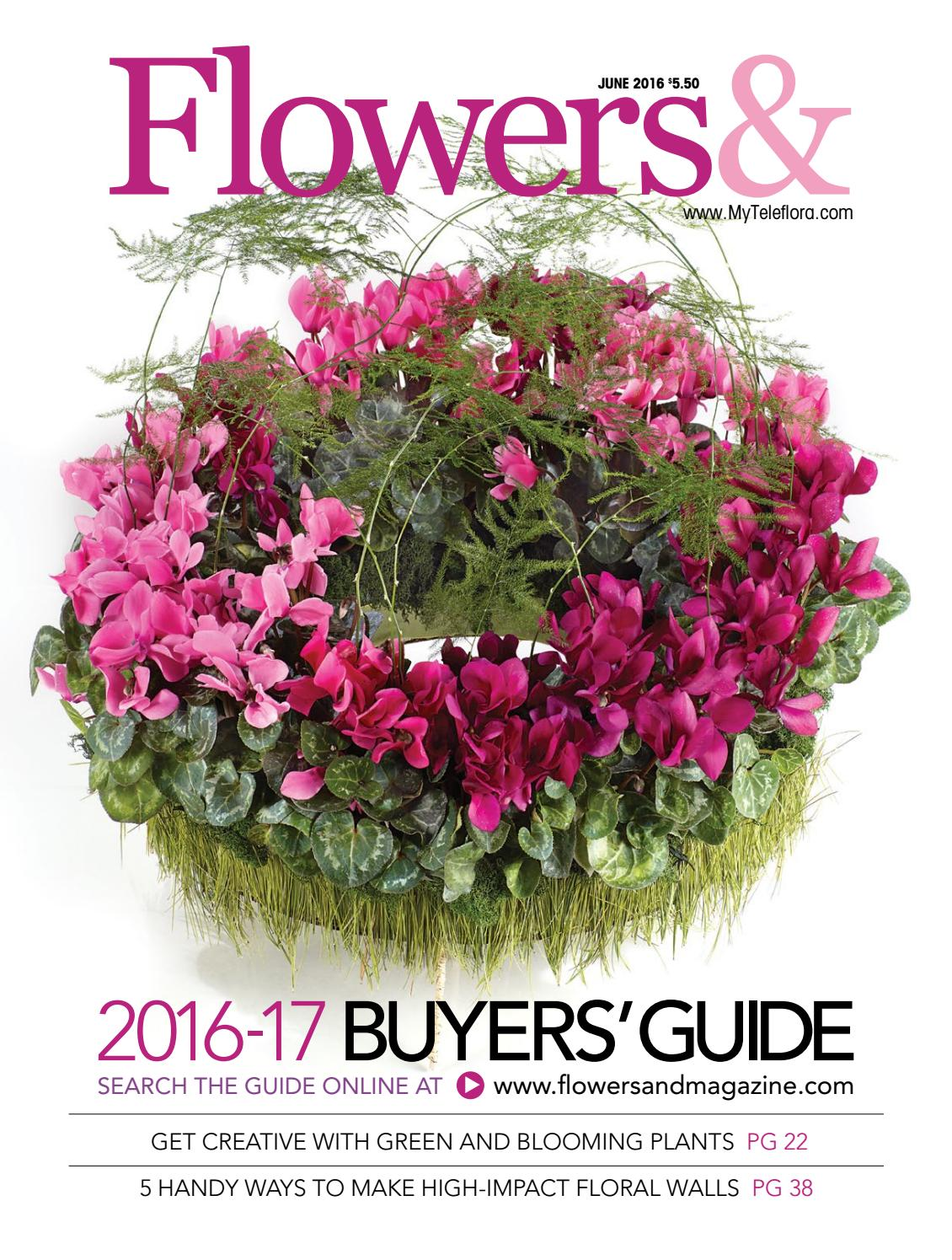 beautiful dogwood branches in large glass vase beautiful.htm flowers  june 2016 by teleflora issuu  flowers  june 2016 by teleflora issuu