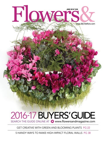 decorative baskets dried flowers small baskets country basket.htm flowers  june 2016 by teleflora issuu  flowers  june 2016 by teleflora issuu