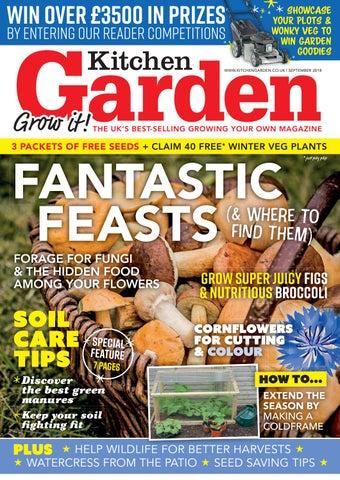 Kitchen Garden September 2018