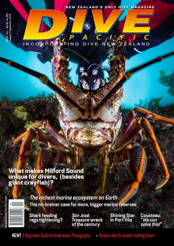 ddcb8457a Dive Pacific August/September 2018 Issue 165 by Dive Publishing - issuu
