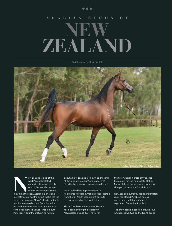 Arabian Studs Of New Zealand By Vink Publishing Issuu