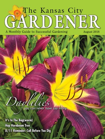 Kcg 08aug18 By The Kansas City Gardener Issuu