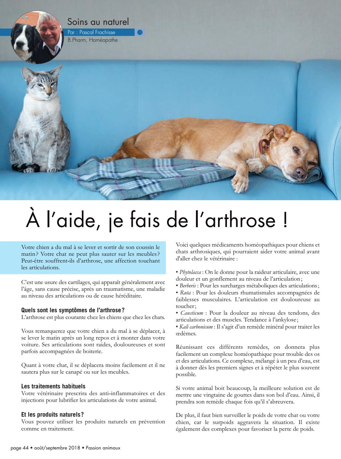 Le Magazine Passion Animaux By Le Magazine Passion Animaux