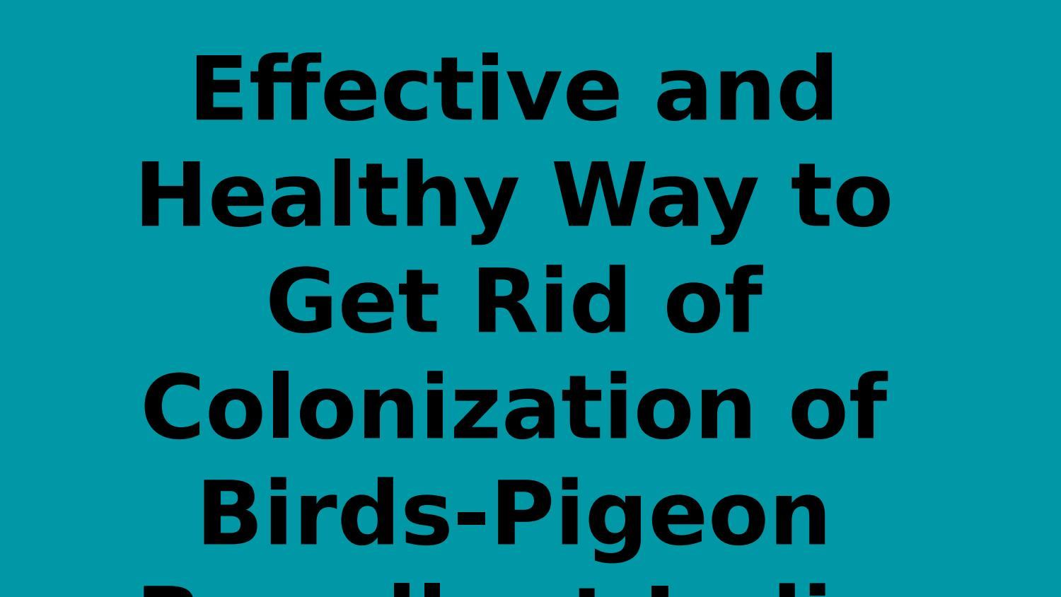 Effective and Healthy Way to Get Rid of Colonization of