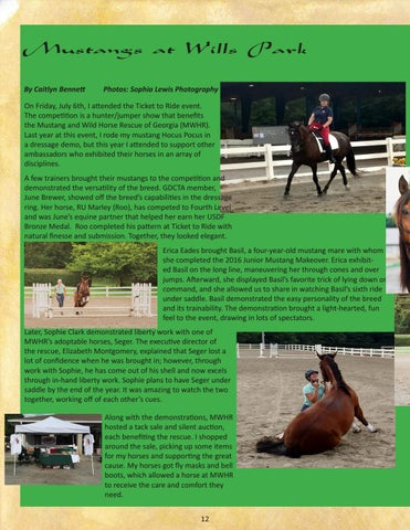 Page 12 of Mustangs at Wills Park