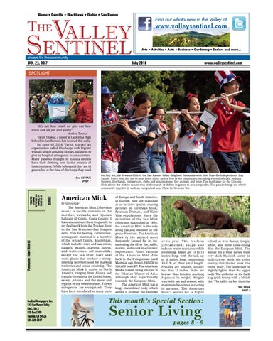 The Valley Sentinel_July 2018