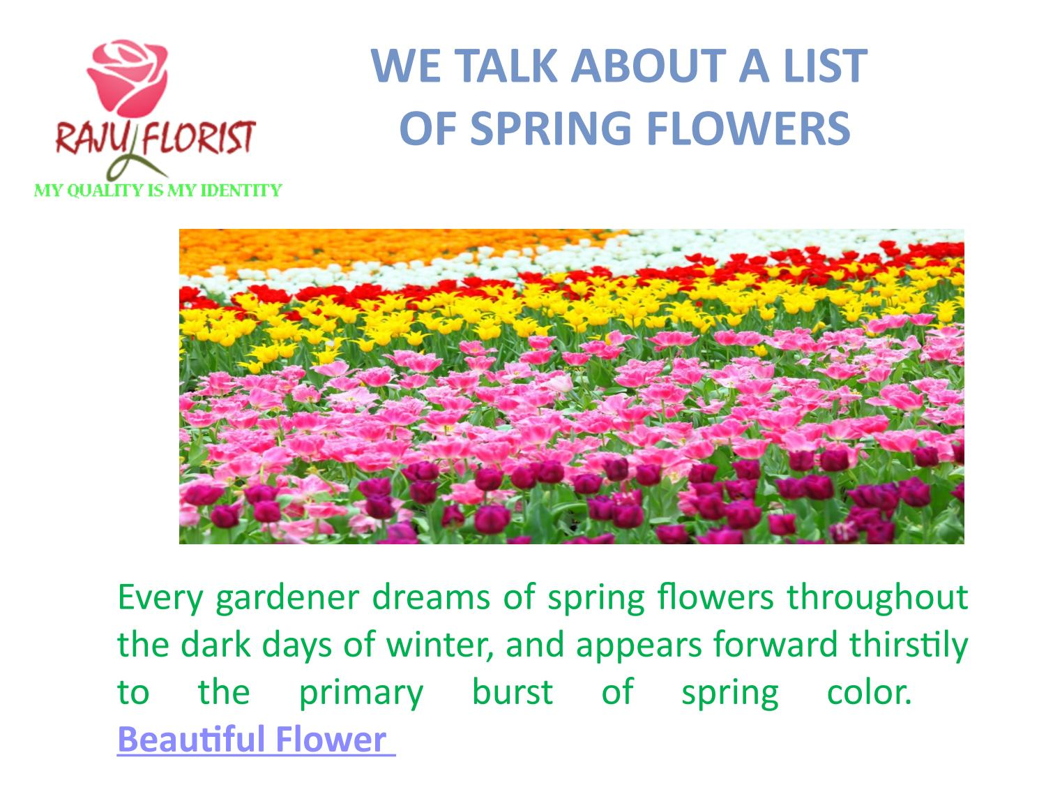 We Talk About A List Of Spring Flowers By Firoz38680 Issuu