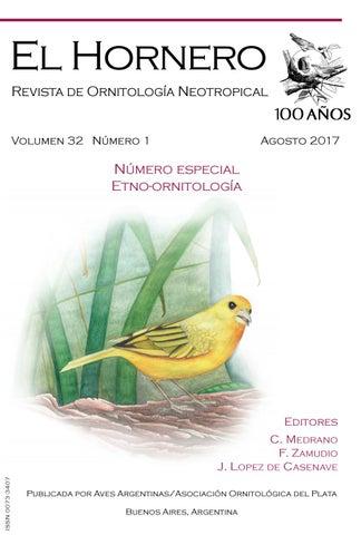 tierra de diatomeas consumo humano en uruguay