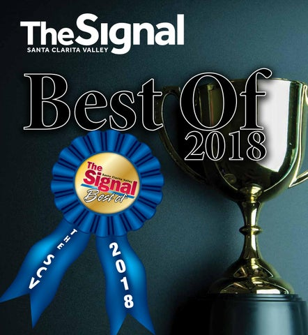 The Signal Best Of 2018 by Signal - issuu