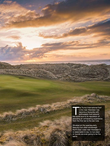 Page 49 of Drive for excellence at Trump International