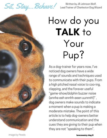 Page 6 of How Do You TALK to Your Pup?