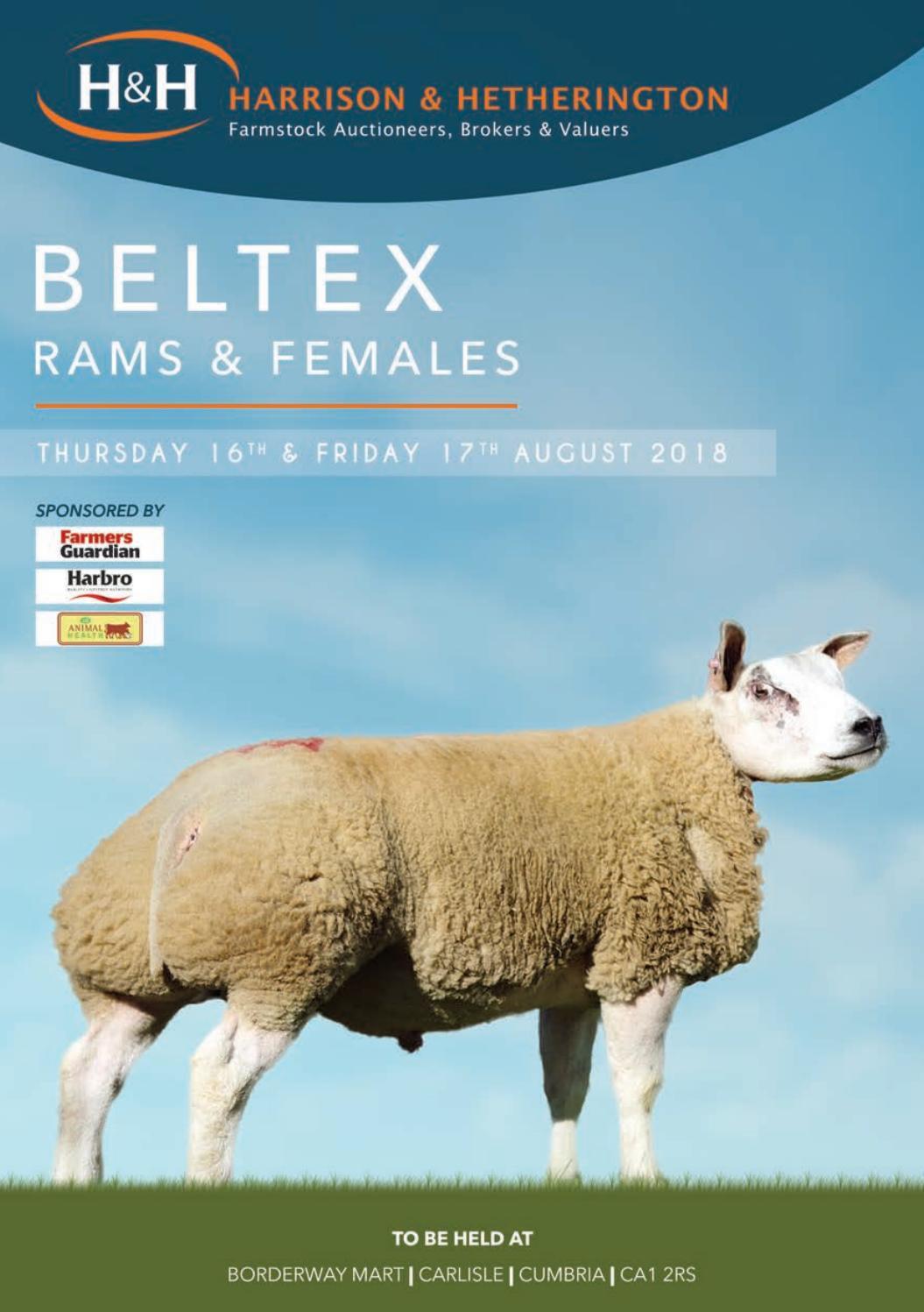 Beltex 16170818 by Harrison & Hetherington - issuu