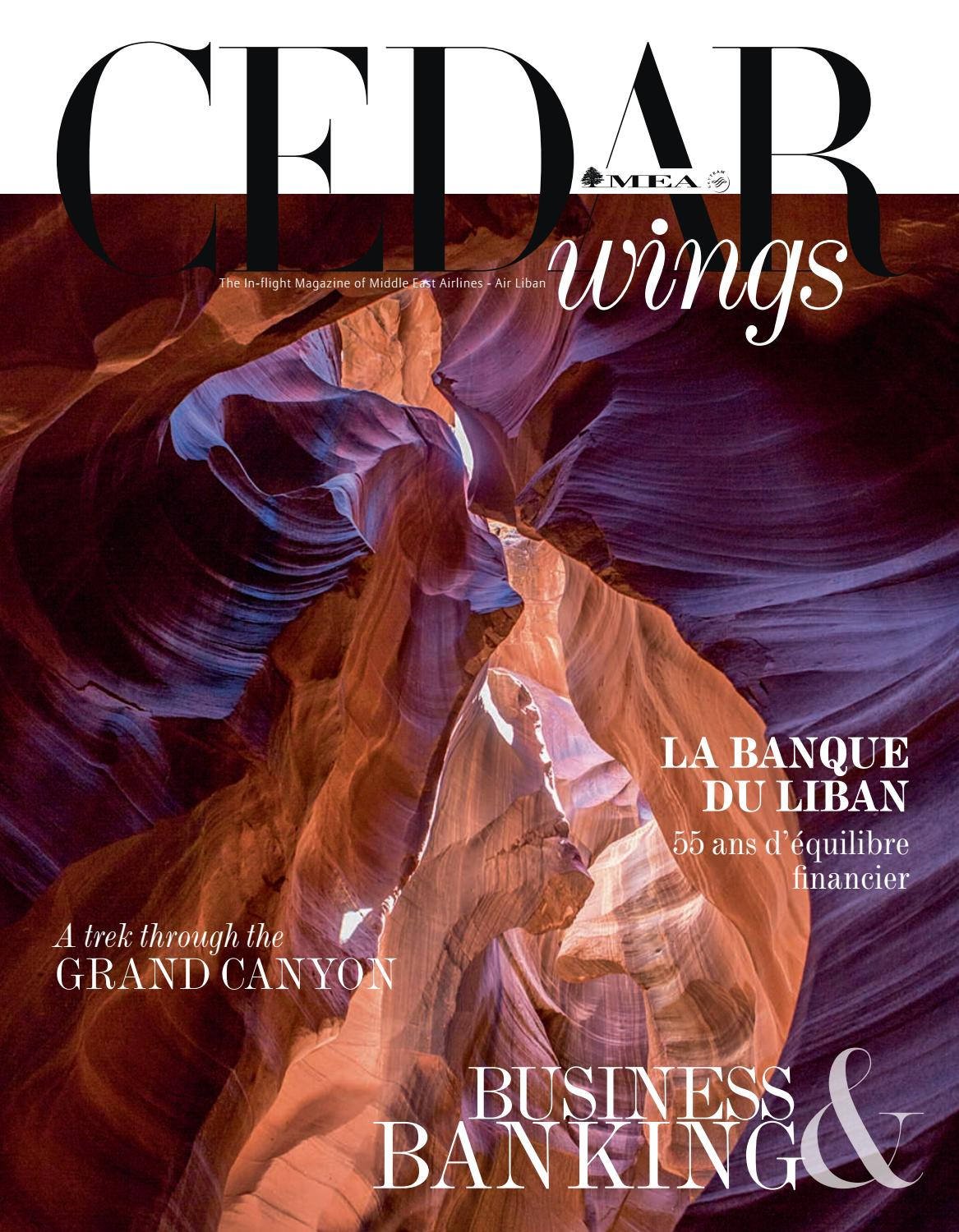 437d67d64 Cedar Wings magazine. Business Issue. August-September 2018 by  CreativeLounges - issuu