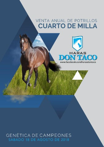 Catálogo Venta Anual Potrillos Cuarto de Milla Haras Don Taco by ...