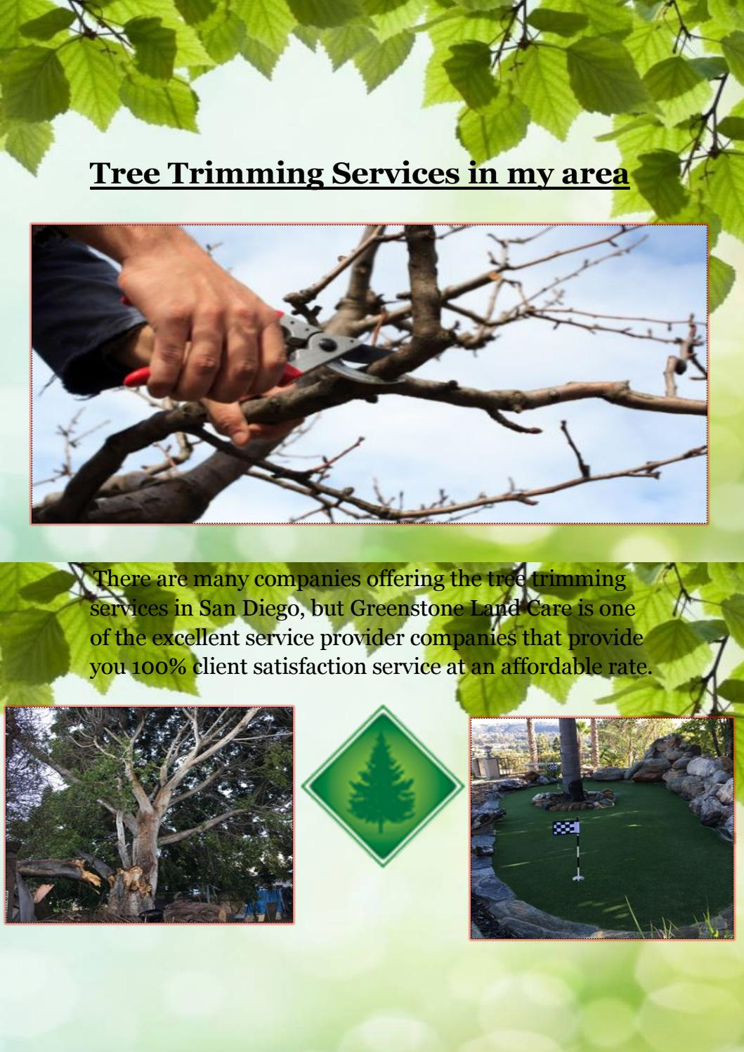 Tree Trimming Services In My Area By Greenstonelandcare Issuu