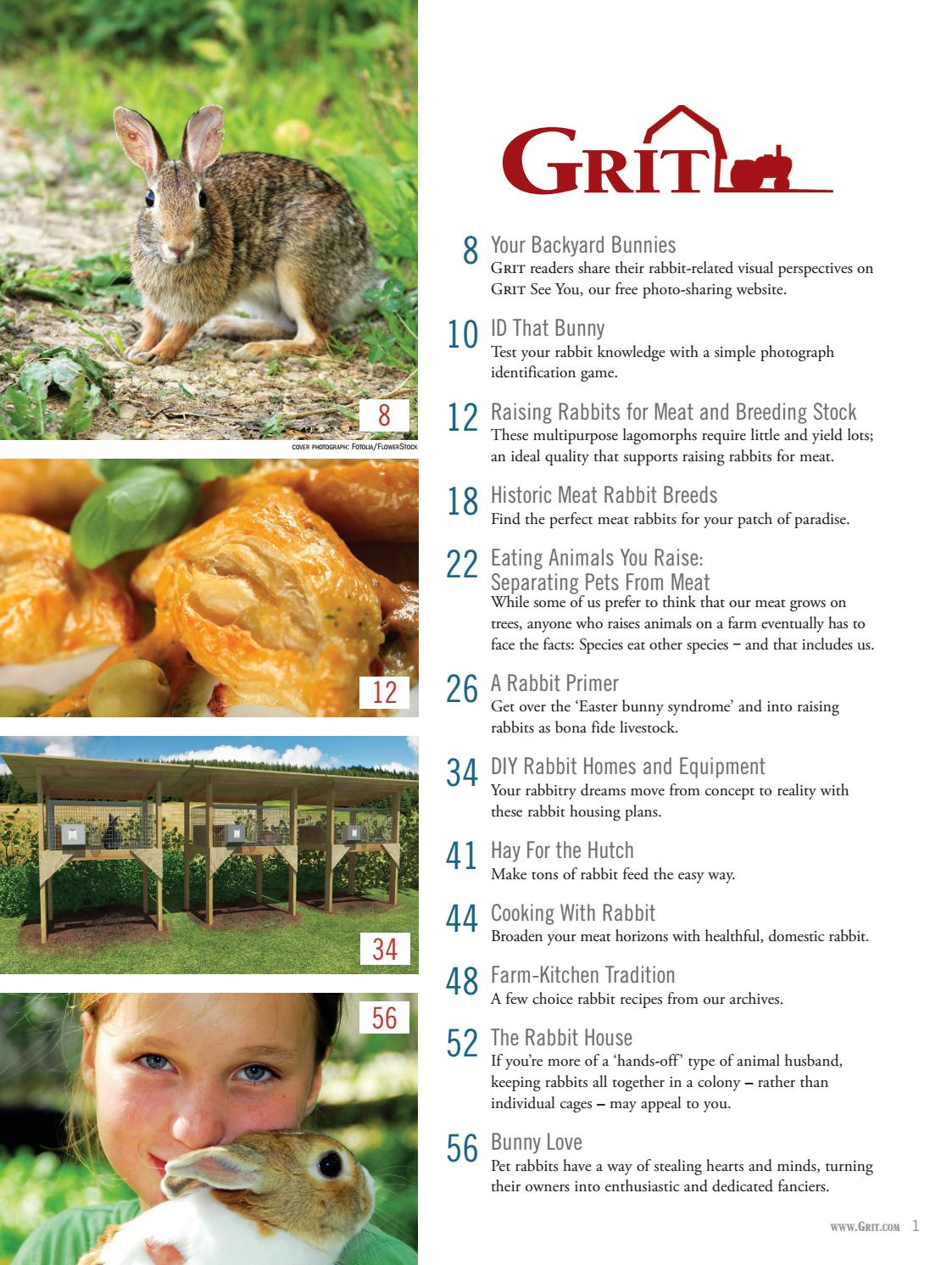 8201 Grit Guide To Backyard Rabbits 2017 By Ogden Publications Marketing Issuu