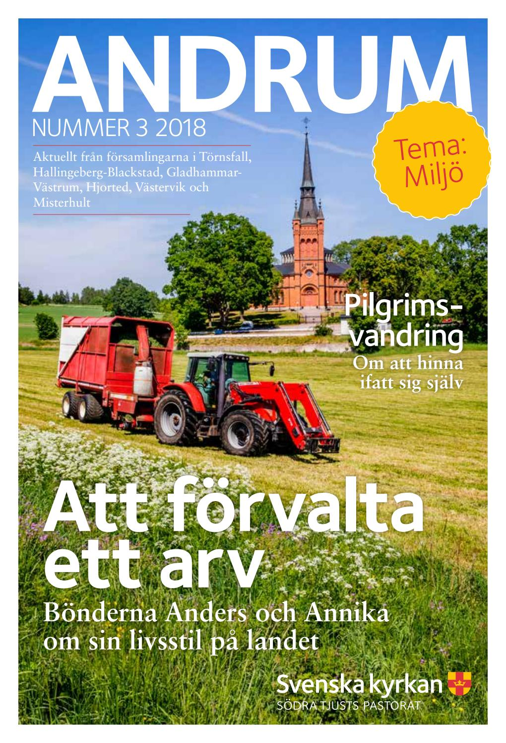 Andrum nr 2 2017 by Thomas Sjstrm - issuu