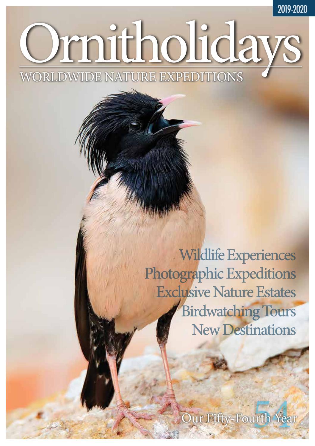 Ornitholidays 2019 2020 Brochure By Skua Nature Group Issuu