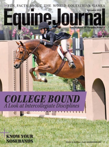 Kids Turn To Screens To Cope With A Chaotic World Futurity >> Equine Journal By Cowboy Publishing Group Issuu